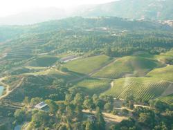 Bird's Eye View of  Sky Pine Vineyards